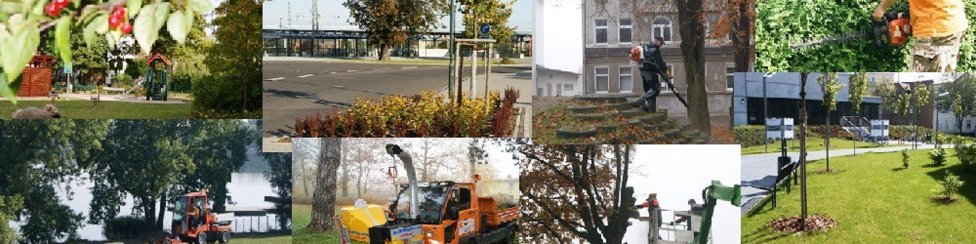 Wohnservice Markranstädt GmbH