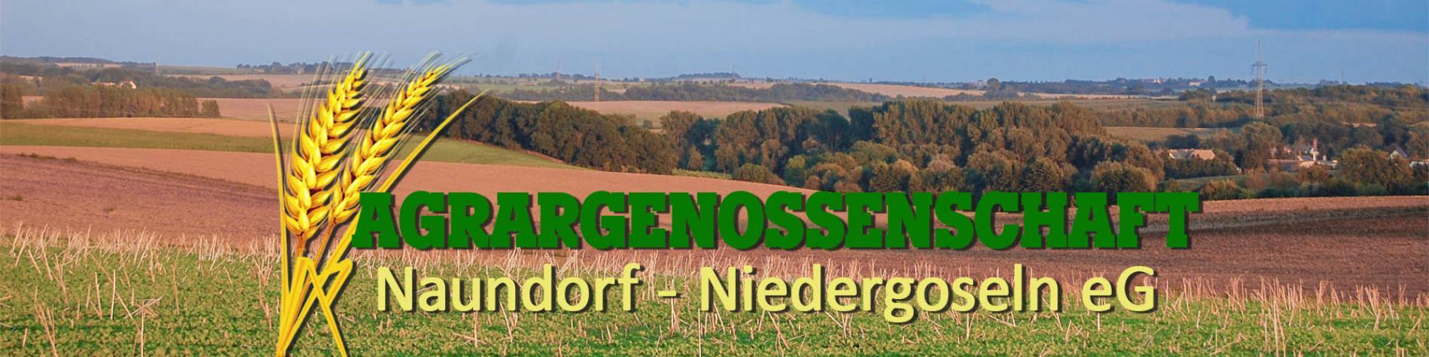 Agrargenossenschaft Naundorf-Niedergoseln eG