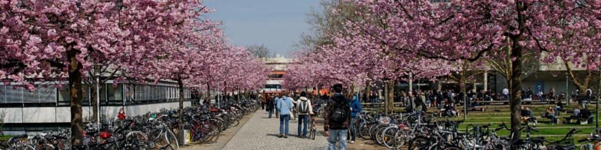 Studentenwerk Göttingen cover